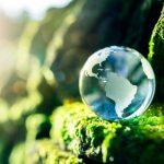 El cuidado del medio ambiente es tendencia en la sociedad y entre las empresas