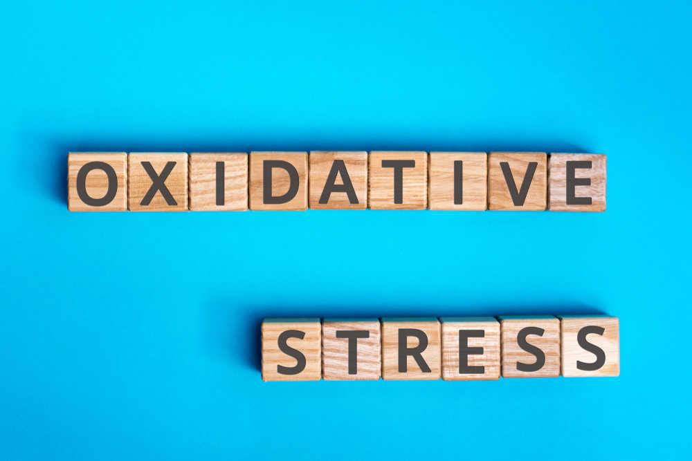 El estrés oxidativo, un problema que cada día más personas sufrimos